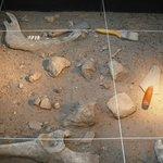 So sieht eine archäologische Fundstätte aus.