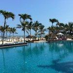 la piscine paysagere