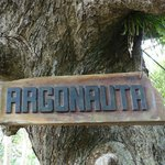 sign of Argonauta