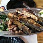 Pesce freschissimo dal mare alla cucina