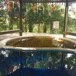 The hot and cold secluded pool