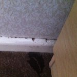 dirty skirting board