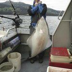 77 pound halibut