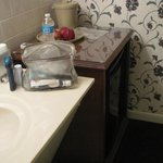 Separate lavatory sink and mini-kitchen