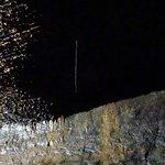 Wortel vanuit de bovengrond tot in de grot.
