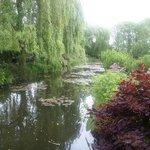 Estanque donde se inspiró Monet para pintar sus Nenúfares