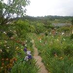 Vista hermosa de una parte del inmenso jardín.