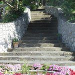 La Badia steps up into the olive grove