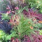 Our Award Winning Show Garden Harrogate Autumn 2013