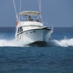Hatts Off Fishing Charters