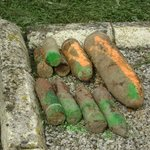 unexploded shells waiting to be destroyed