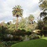 nothern part of botanic gardens, near the big lake