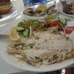 excellent fish