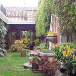 nice big garden