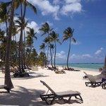La playa, por lejos lo mejor del hotel