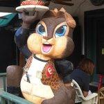 Image of Chubby Chipmunk