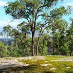 Moss rock on hill overlooking CY O'Connor Lake (which Mundaring Weir is on)