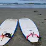 Surf Sister Boards