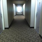 New carpet in hallway & fresh painted room doors!
