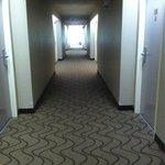 New carpet in hallway & fresh painted room doors!