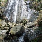 La Coca Falls at El Junque Rain Forest in San Juan