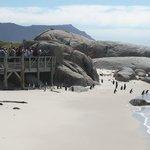 Boulders beach (Michel M.)