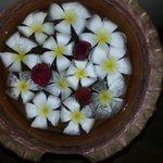 Цветы Лилаводи напоминали нам, что рай на земле есть!)
