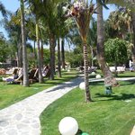 Gardens surrounding family pool