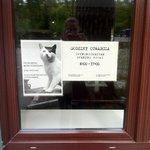 Polnischer Sinn für Humor: Schild mit hitler-Katze am Restaurant-Eingang