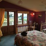 Room 17 rhododenron room - just lovely views to die for and the bird life tuis, wood pigeon ...
