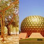 Banyan Tree and Matrimandir -  Soul of Auroville