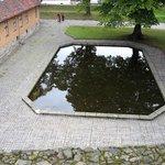 inside pond