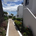 Walkways to other accomodation lined with beautiful flower beds.