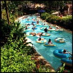 Castaway Creek at Typhoon Lagoon -- my favorite activity of the day.