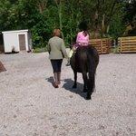 Blessingbourne Horse Riding