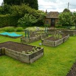 rised beds in the vegetable garden