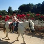 Pony ride (€6 for 25 mins)