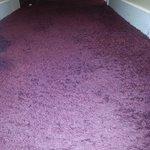 ugly disgusting carpet in 104