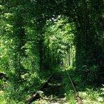 Klevan tunnel of love