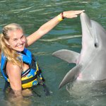 At Dolphin Discovery