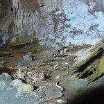 Grotta del Fico      Baunei, Sardegna, Italia