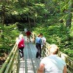 Crossing the creek via footbridge