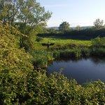 Rhuddlan Nature Reserve