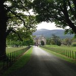 Riding up upon Muckross House.