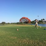 Lefty Ben Arensman teeing off on the 18th hole. Beautiful Royal Poinciana in full bloom in backg
