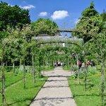 Gardens of Albert Kahn