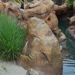 Hidden Mickey near Ariel's Grotto