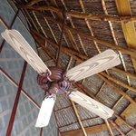 Ceiling fan in room