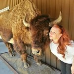 Me & the buffalo out back of Wall Drug