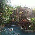 Tropical indoor wonderland
